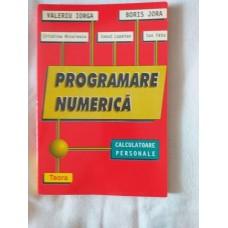 Programare numerica - Editura Teora