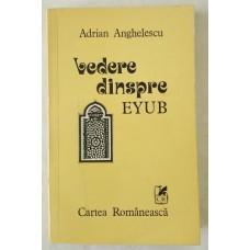 Adrian Anghelescu - Vedere dinspre Eyub
