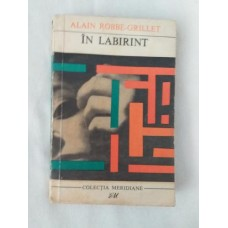 Alain Robbe-Grillet - In labirint